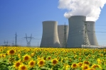 Cooling towers in sunflower field